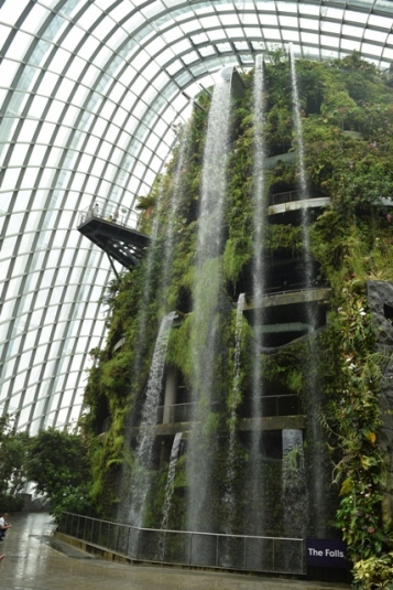 Waterfall inside Cloud Forest