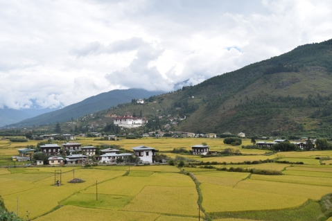 bhutan0132