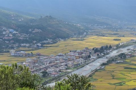 View of Paro Town