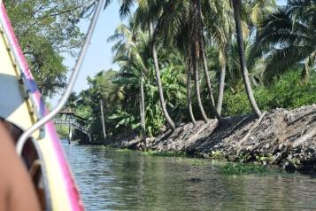 Felt like Alleppey (Kerala)