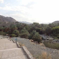 The steps towards wadi