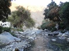 The wadi