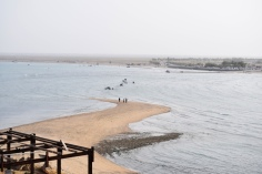 View of Al Sawadi from the island (ypu can see people crossing the waters)