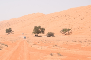 Wahiba Roads