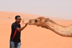 This camel loves orange
