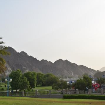 Inside the park